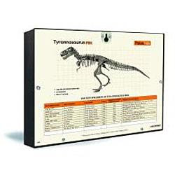 Paleo Lab Tyrannosaurus Rex