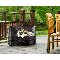 Wicker Dog Day Bed w/ Outdoor Cushion - Thumbnail 1