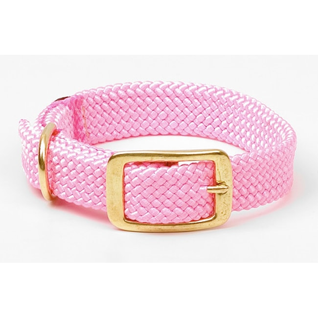 Mendota Double-Braided Hot Pink Brass Buckle Junior Collar