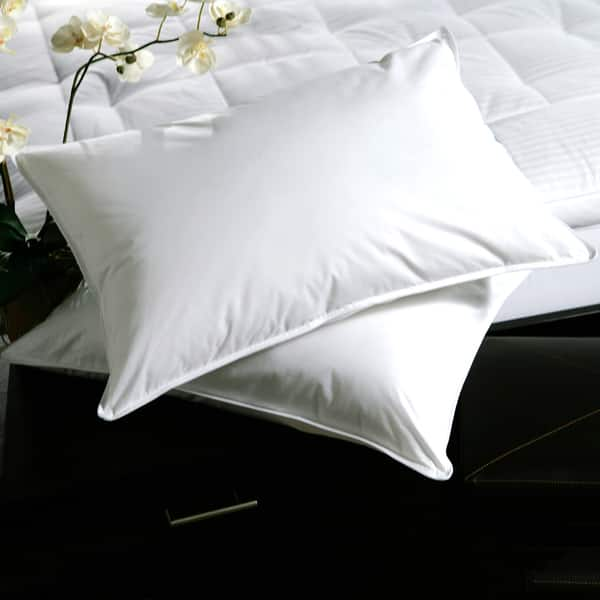 Shop White Plush Top Medium Density Goose Feather Pillows Set Of 2
