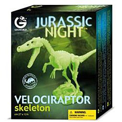Jurassic Night Glow-in-the-dark Velociraptor Skeleton - Thumbnail 1