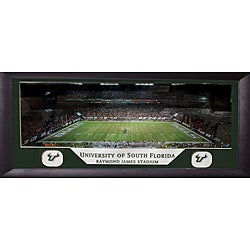University of South Florida Raymond James Stadium Panoramic Frame