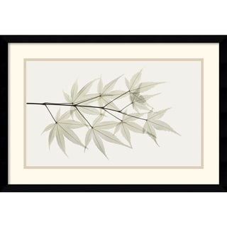 Albert Koetsier 'Japanese Maple' Framed Art Print