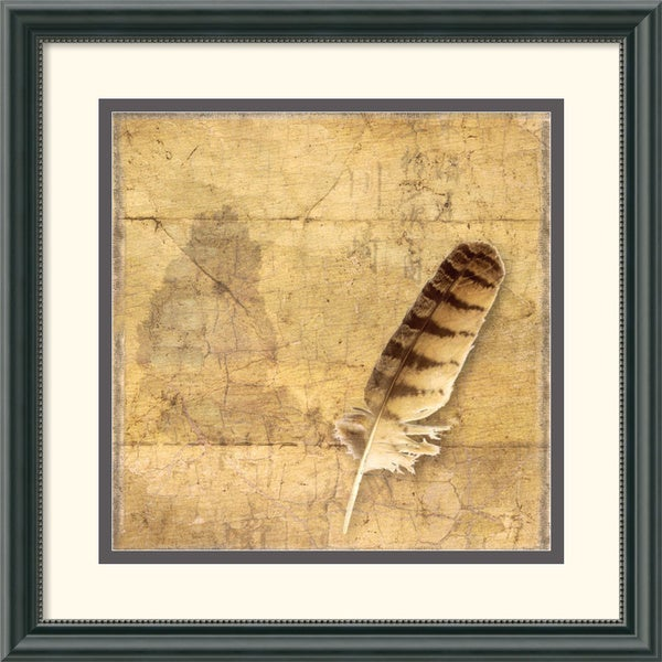 Susan Friedman 'Owl Feather' Framed Art Print