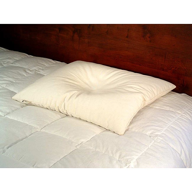 Bean Products Wheat Dreamz White Cotton Buckwheat-filled Pillow