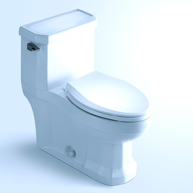 'BINGHAMTON' Contemporary European Toilet with Single Flush and Soft Closing Seat