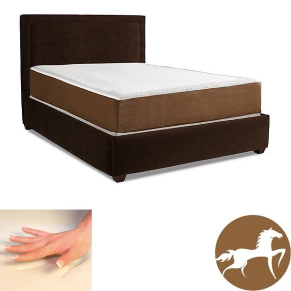 Spinal Response Exquisite 8-inch Twin-size Memory Foam Mattress