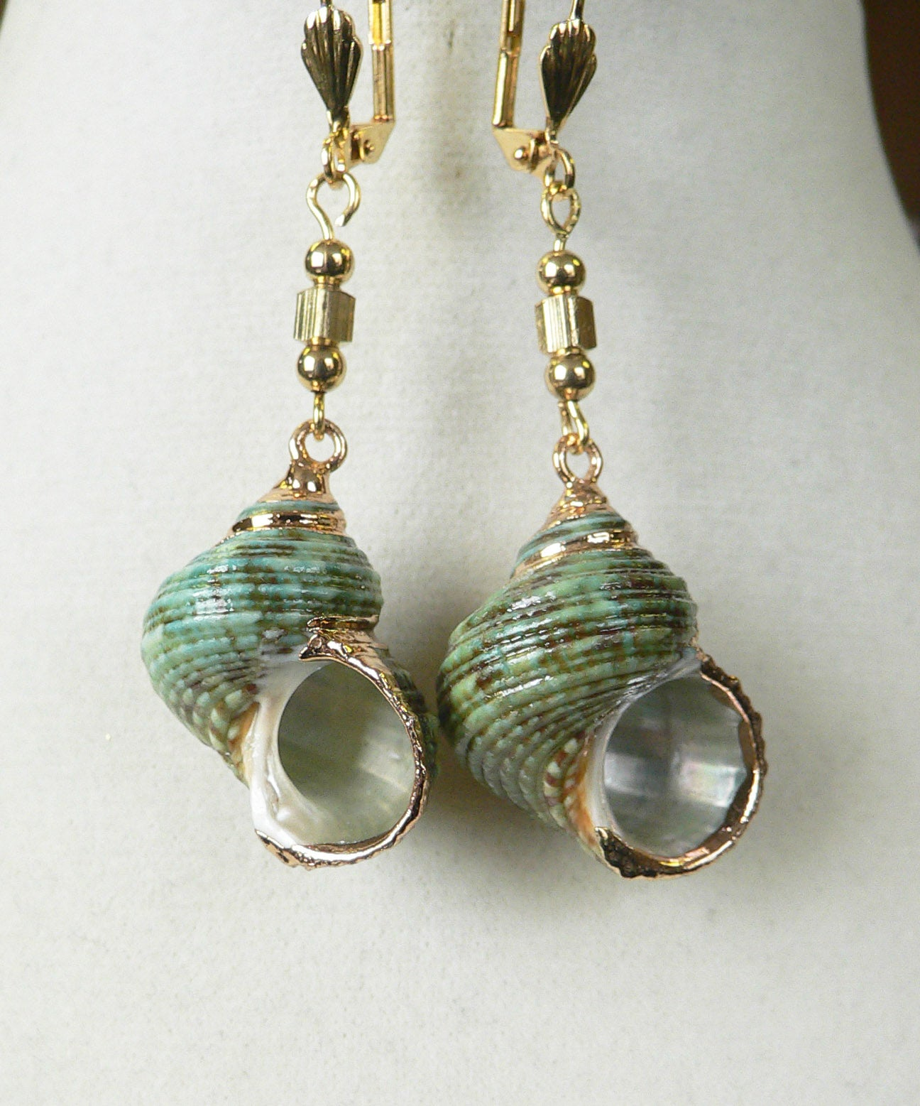 Traxine' Shell earrings