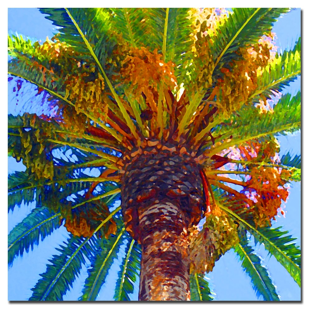 Amy vangsgard 39 palm tree looking up 39 canvas art free for Palm tree painting