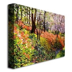David Glover 'Magic Flower Forest' Canvas Art - Thumbnail 1