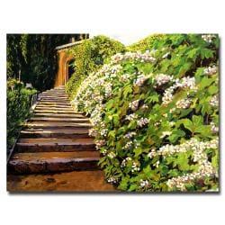 David Glover 'Garden Stairway Tuscany' Canvas Art