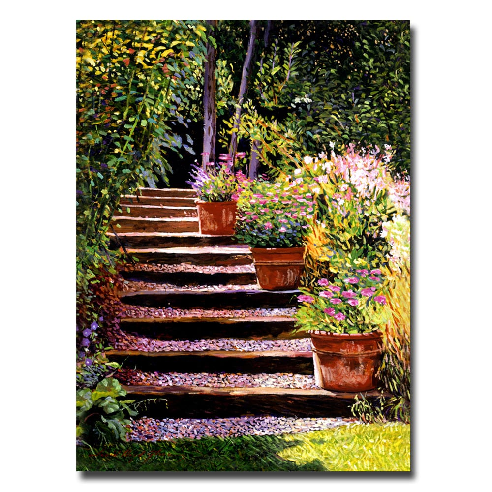 David Glover 'Pink Daisies Wooden Steps' Canvas Art