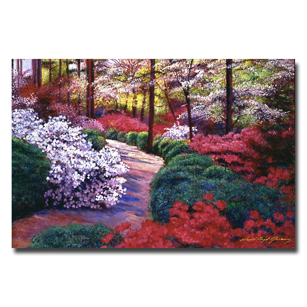 David Lloyd Glover 'April Beauties' Gallery-Wrapped Canvas Art