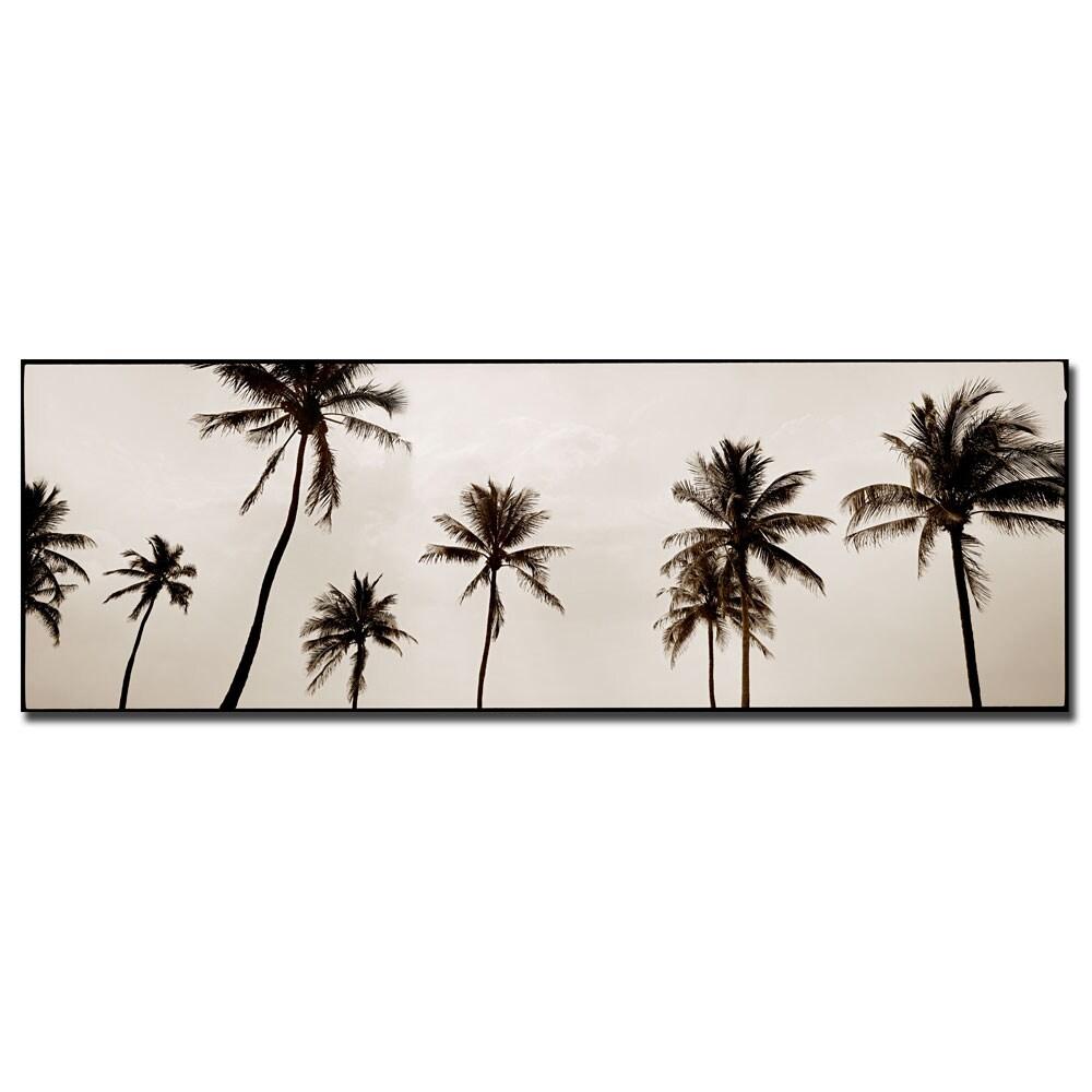 Preston 'Black and White Palms' Canvas Art