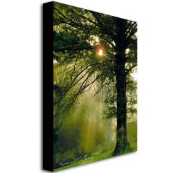 Kathie McCurdy 'Magical Tree' Canvas Art - Thumbnail 1