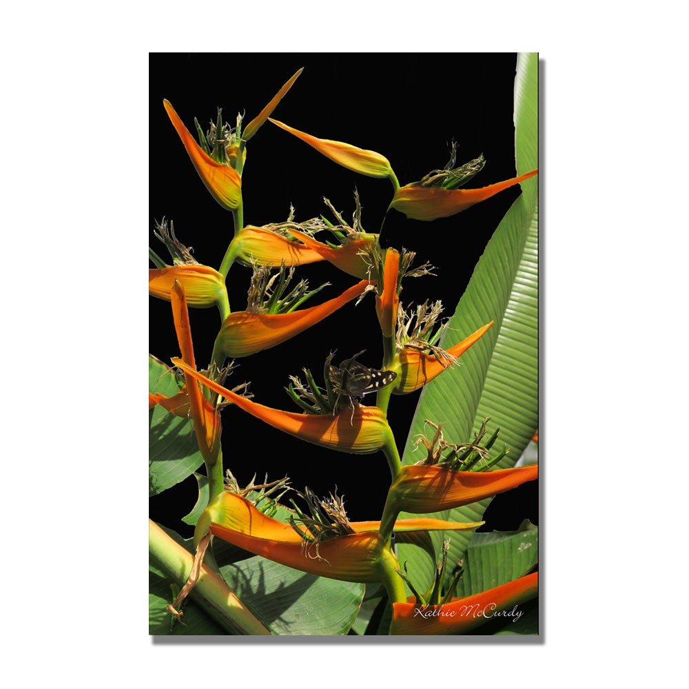 Kathie McCurdy 'Tropical Paradise' Canvas Art