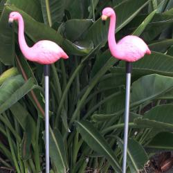 Flamingo Garden Stake Solar Light (Set of 2)