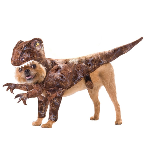 Animal Planet Red Raptor Dog Halloween Costume