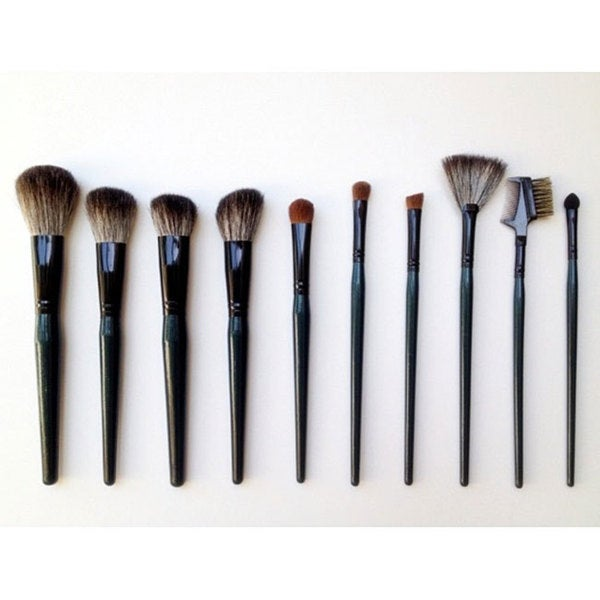 Fortuna 10-piece Teal Pony and Sable Hair Makeup Brush Set