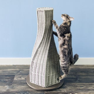 Calypso Cat Scratcher (Option: Smoke)