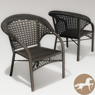 Maria Dark Grey Wicker Fan Back Outdoor Club Chairs (Set of 2) by Christopher Knight Home