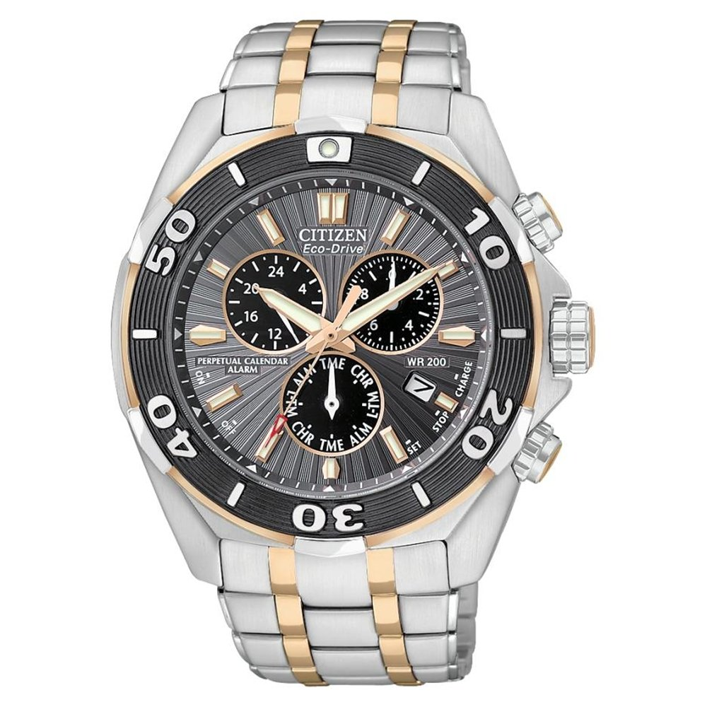 Citizen Men's Stainless Steel Perpetual Calendar Watch