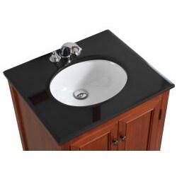 WYNDENHALL Windsor Cinnamon Brown 24-inch Bath Vanity with 2 Doors and Black Granite Top