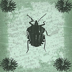 Ankan 'Vintage Insect 1' Gallery-wrapped Canvas Art