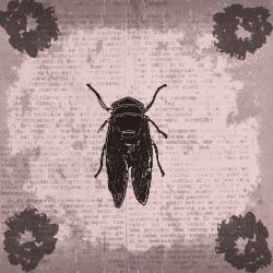 Ankan 'Vintage Insect 2' Gallery-wrapped Canvas Wall Art