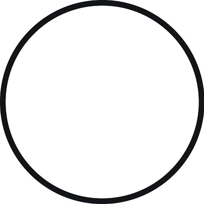 Standard System O-Ring