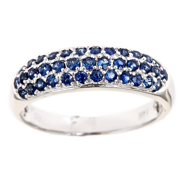 Anika and August 14k White Gold Round Blue Sapphire Band