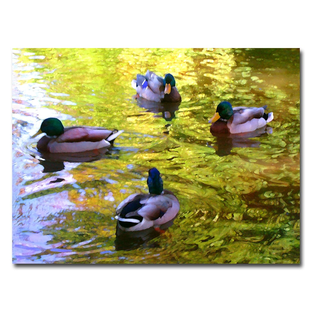 Amy Vangsgard 'Four Ducks on Pond' Gallery-Wrapped Canvas Art