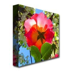 Amy Vangsgard 'Rose Under Tree' Canvas Art - Thumbnail 1