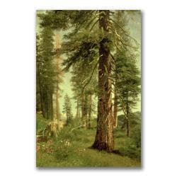 Albert Bierstadt 'California Redwoods' Gallery-wrapped Canvas Art