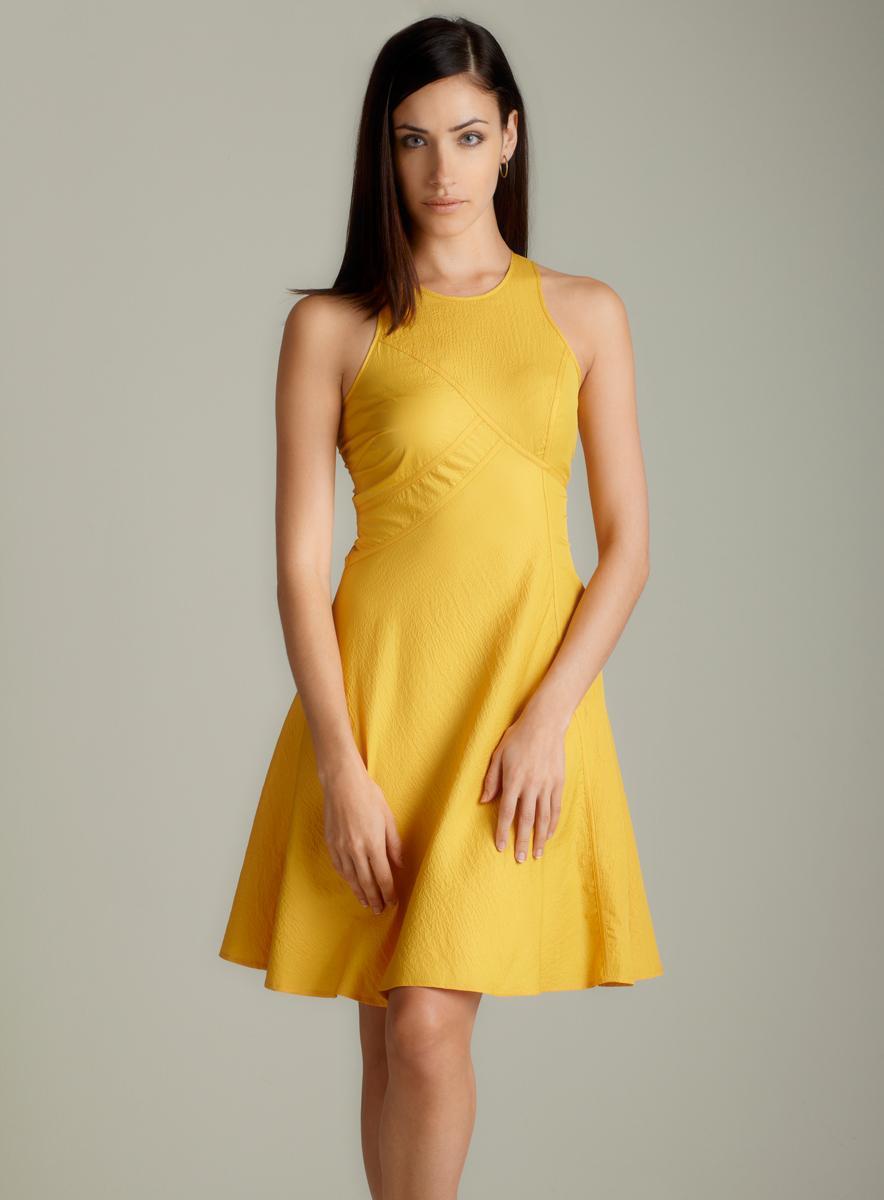 Andrew Marc Sleeveless Aline Dress