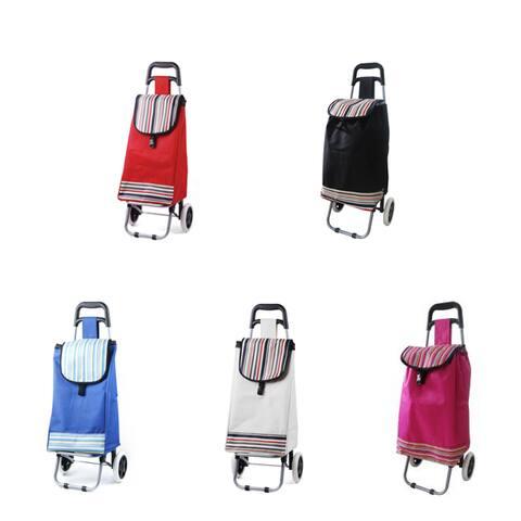 ATHome Lightweight Trolley Bag