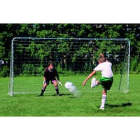 Franklin Sports Premium Steel Soccer Goal (10' x 5')