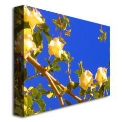 Amy Vangsgard 'Flowering Tree' Canvas Art