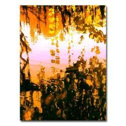 Amy Vangsgard 'Ducks in Morning Light' Canvas Art