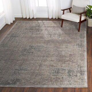 Nourison Graphic Illusions Grey Antique Damask Pattern Rug (7'9 x 10'10)