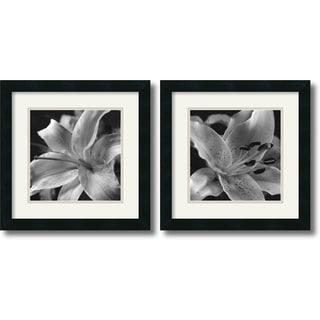 Gaetano Art Group 'Lily Set - set of 2' Framed Art Print 16 x 16-inch) Each