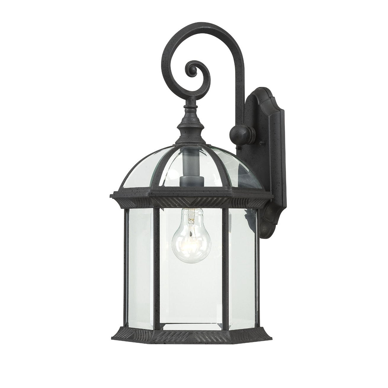 Shop Nuvo Boxwood 1 Light Textured Black 19 Inch Wall