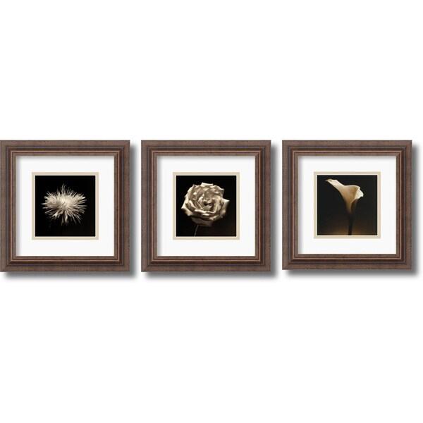 Shop Walter Gritsik \'Flower Series: Rustic\' Framed Art Print Set 12 ...