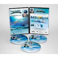Weber Wyland Art Studio DVD 13 Episodes Series 1