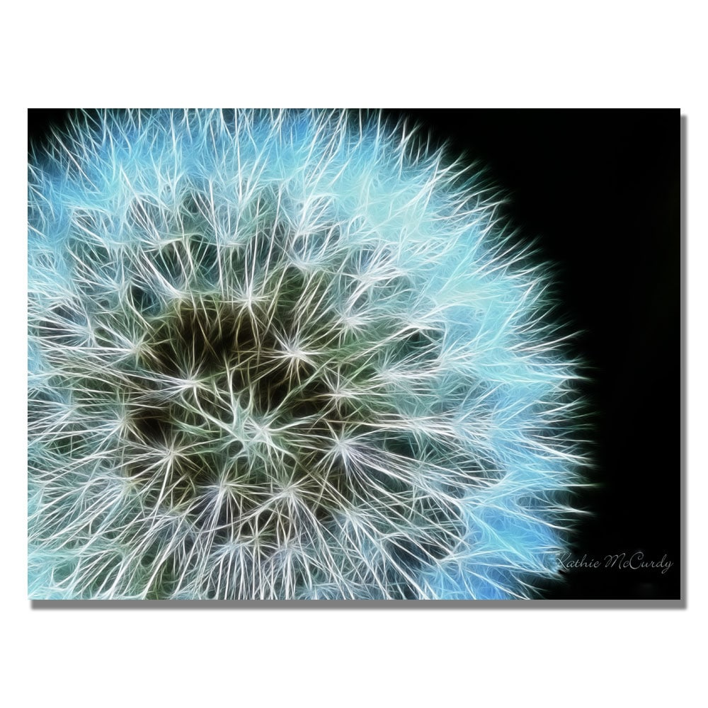 Kathie McCurdy 'Dandelion Seed Head Full' Canvas Art