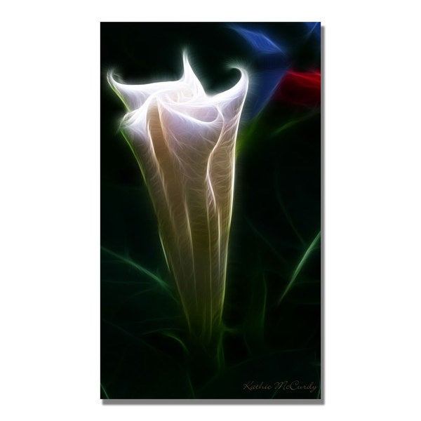 Kathie McCurdy 'Moonflower Bud' Canvas Art
