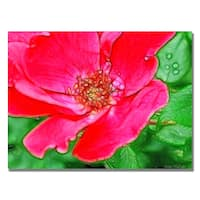 Kathie McCurdy 'Red Rose' Canvas Art - Multi
