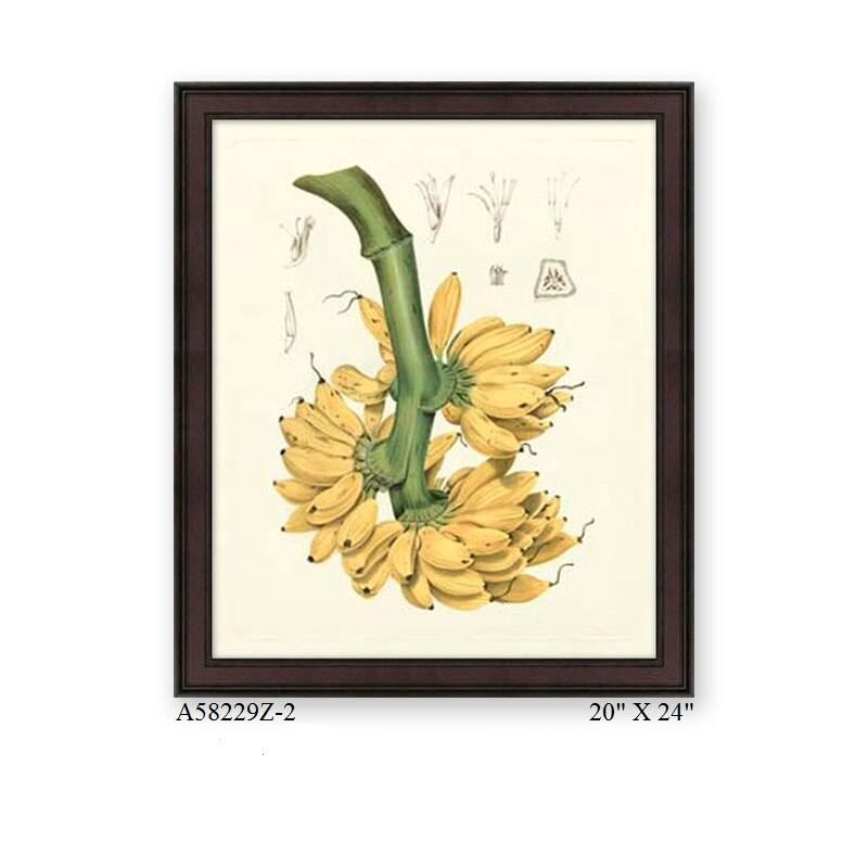 American Giclee Print in Wooden Frame