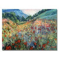 'Field of Wild Floweres' Canvas Art - Multi