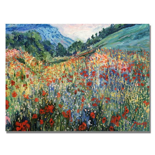'Field of Wild Floweres' Canvas Art